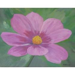 Naturaleza flor lila